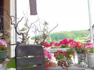 Unser kleiner Balkon