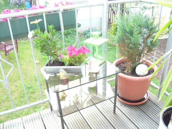 Terrasse / Balkon 'Balkon im Juni'