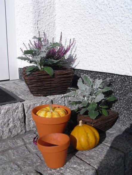 Deko 'Herbst 2010'