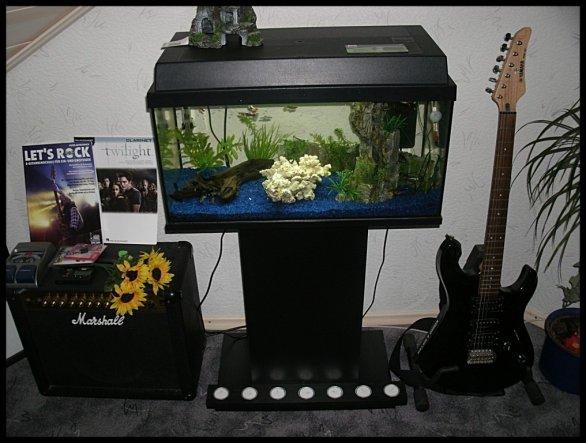 wohnzimmer 'wohnzimmer' - wohnungsschau - zimmerschau - Aquarium Wohnzimmer