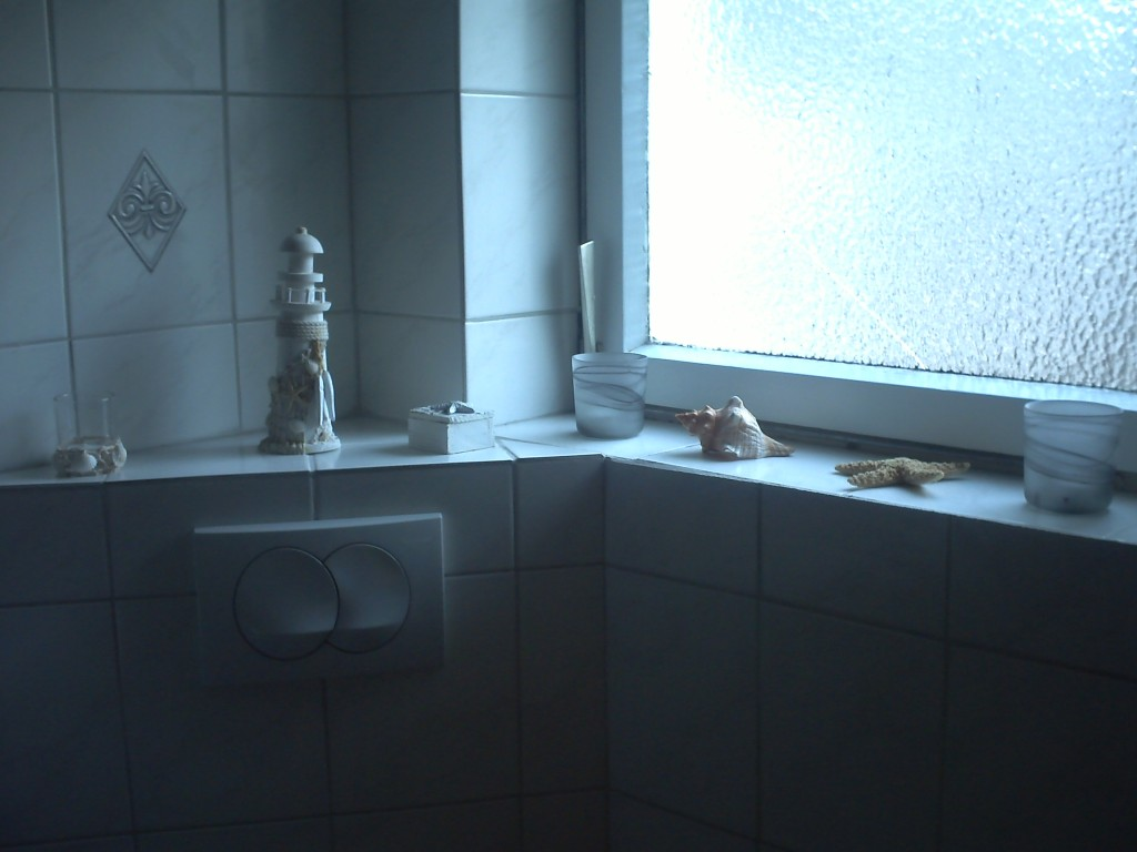 bad 39 wellnessdusche badoase 39 unser kleines reich noch nicht perfekt aber wir arbeiten dran. Black Bedroom Furniture Sets. Home Design Ideas
