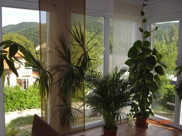 Wohnzimmer 'unser Wintergarten'