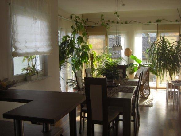 Esszimmer 'das Esszimmer/Wintergarten'