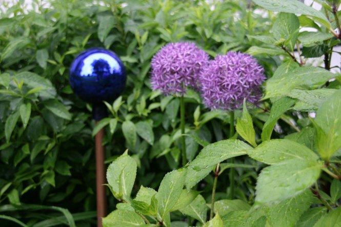 Garten 'Unser kleiner Garten'