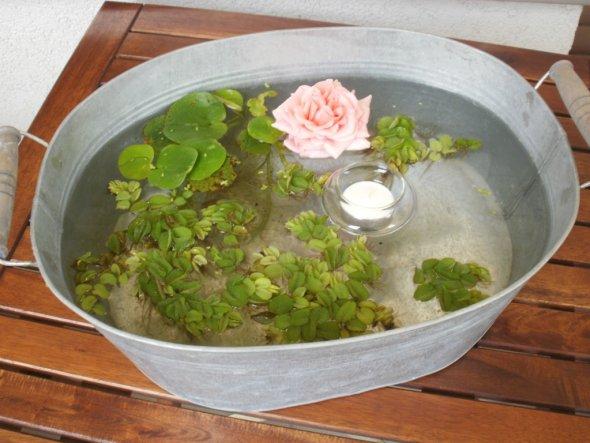 unser neuer Mini-Teich