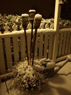 Terrasse / Balkon 'Winterterasse'