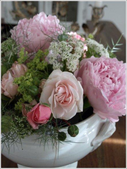Mai/Juni Die letzten Pfingstrosen und erste Sommerblumen