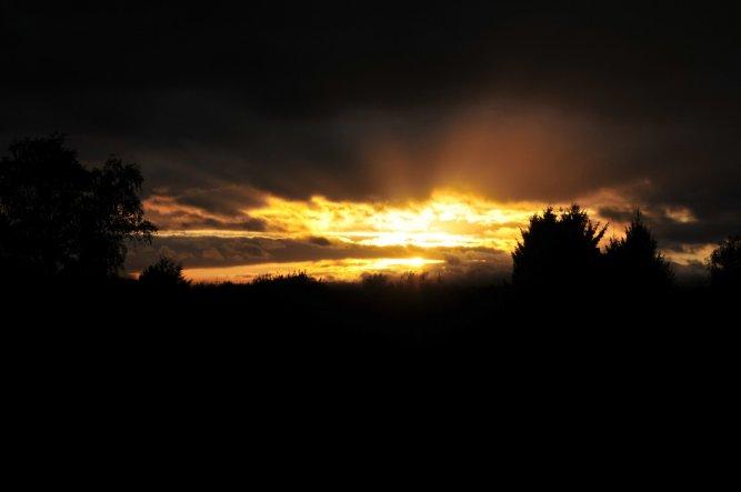 Ein Blick am Abend aus meinem Küchenfenster