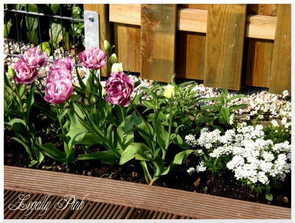 Garten 'Sommerwohnzimmer'