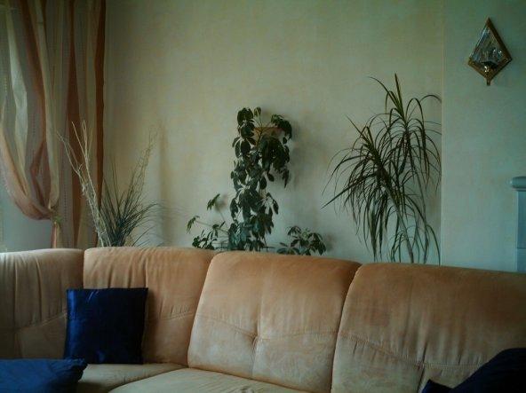 Wohnzimmer 'Wohn/Esszimmer'