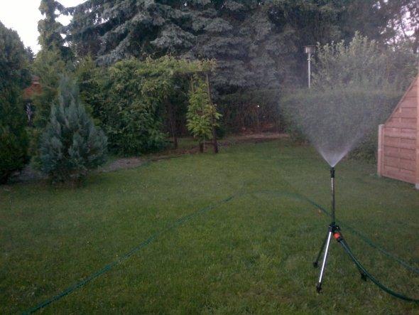 Garten 'WochenendBungalow'