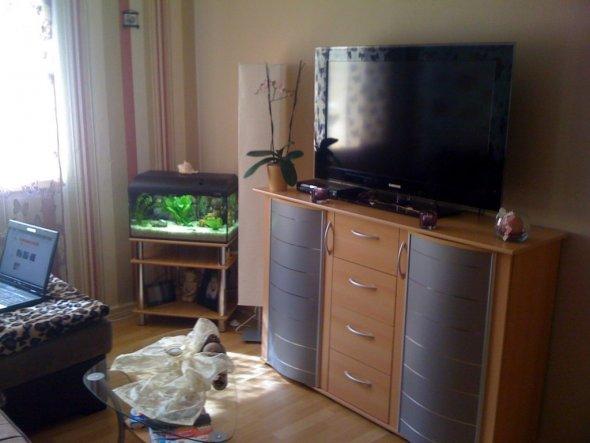 Wohnzimmer 'Jugendzimmer'