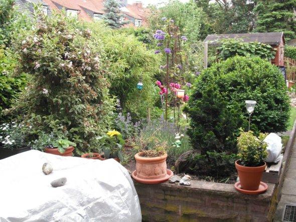 Garten 'Garten Frühjahr/Sommer 2010'