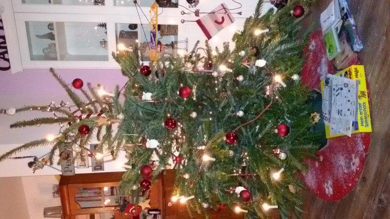 Unser Weihnachtsbaum 2015.