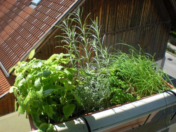 Terrasse / Balkon 'Blumenecke'