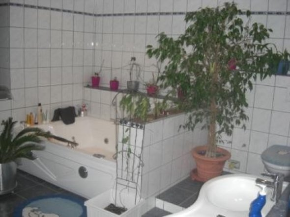 Whirlpool-Badewanne und WC