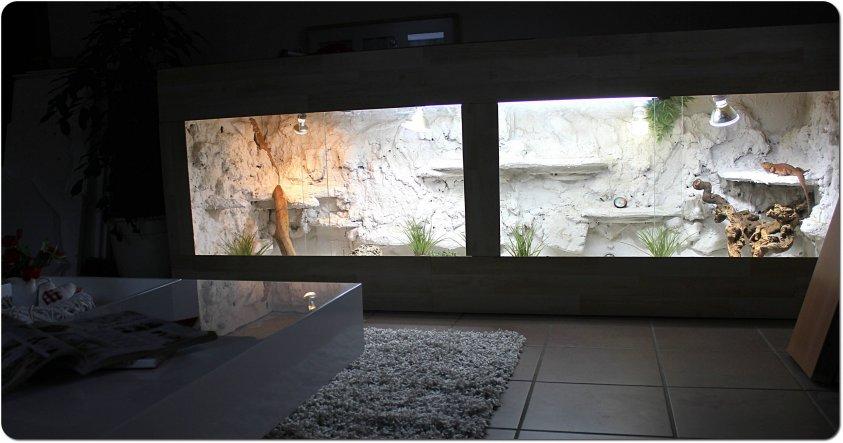 Das grosse Terrarium für unsere zwei Bartagamen-Mädels steht im Wohnzimmer.. :)  (Licht ist an!)