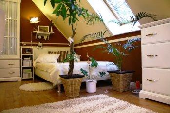 wohnideen teenagerzimmer wandfarbe | möbelideen, Hause deko