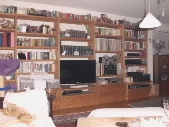 kleines Schläfchen am Nachmittag und das Sofa gehört ihm