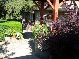 Garten/Aussenansichten