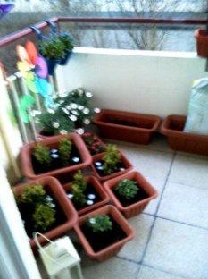*mein balkon*