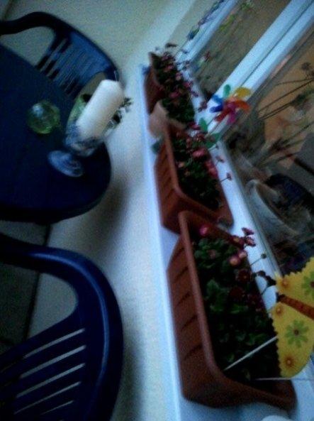 Terrasse / Balkon '*mein balkon*'