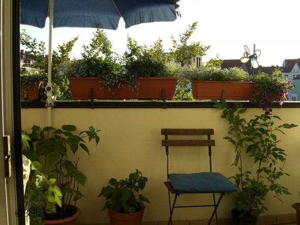 Terrasse / Balkon 'Blumenzimmer'