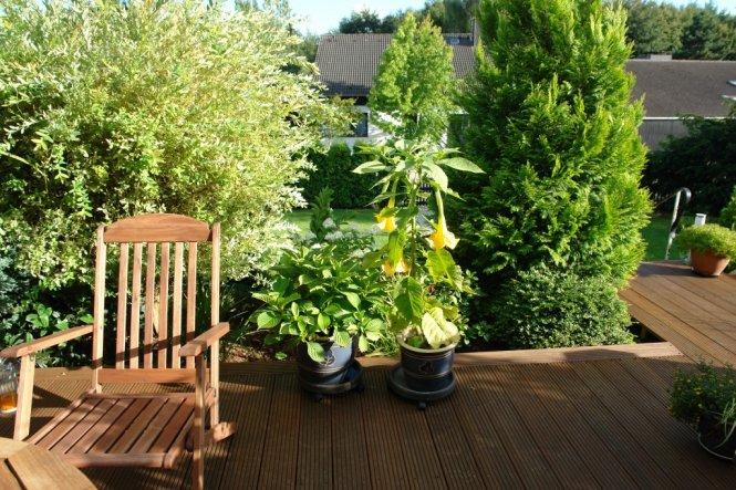 Garten 'Garten II'