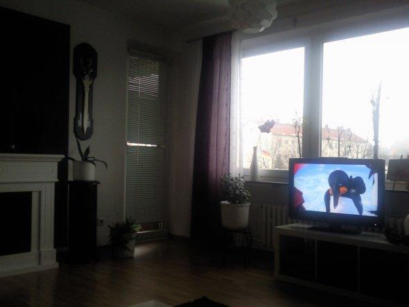 Wohnzimmer 'alte Wohnung'