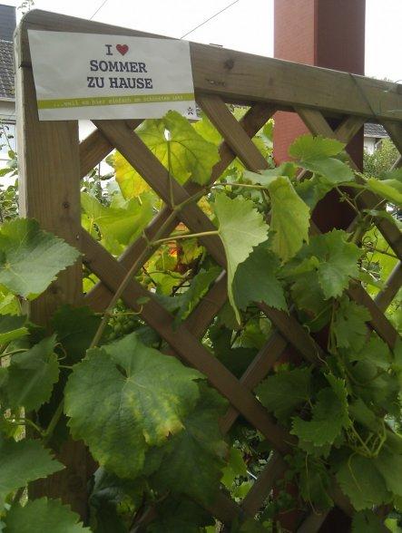 Garten 'The garden's tale'