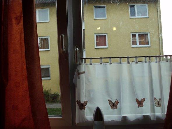 Das ist mein Fenster und meine Gardinen, auch wenn die Aussicht nicht gerade weit geht :D