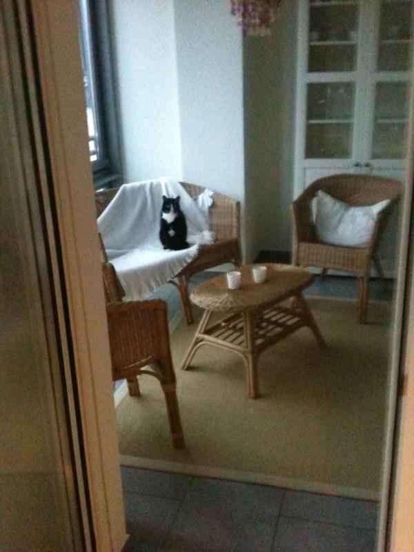 terrasse balkon 39 wintergarten 39 mi casita zimmerschau. Black Bedroom Furniture Sets. Home Design Ideas