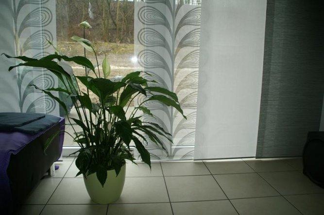 Wohnzimmer 'Mein Frühlingswohnzimmer 2012'
