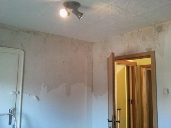 Renovierung 1