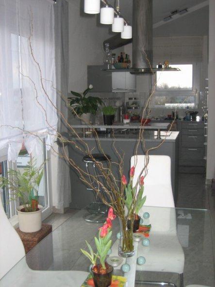 Wohnzimmer 'lebensraum'