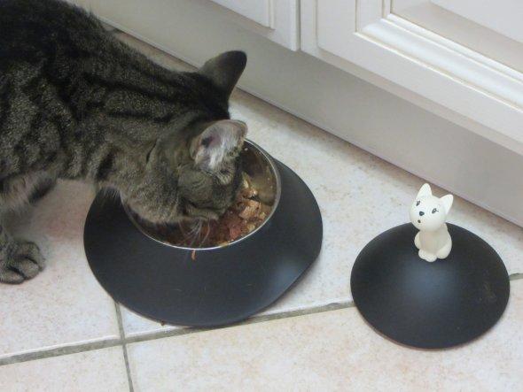 Lange schon schlich ich um den doch sehr teuren Katzennapf von Alessi. Nun haben ihn meine zwei Süßen bekommen. Praktisch: durch das Deckelchen bleibt
