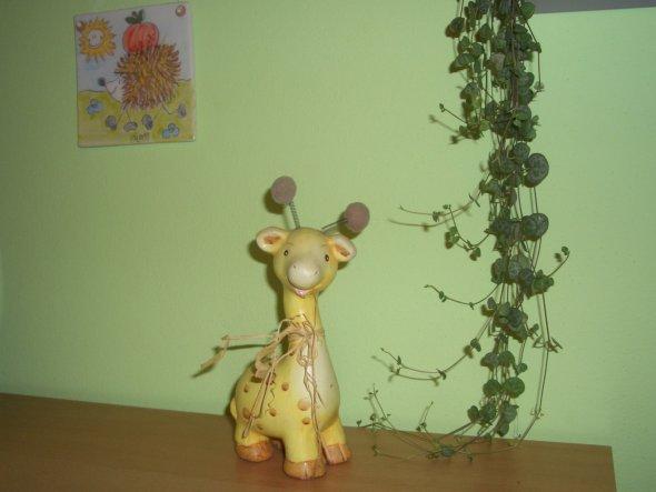Hobbyraum 'Giraffenland'