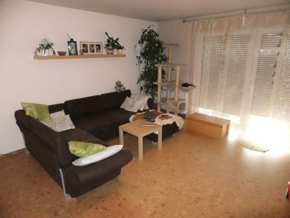"""Unsere Couch und der Kratzbaum für unsere """"Raubkatzen"""""""