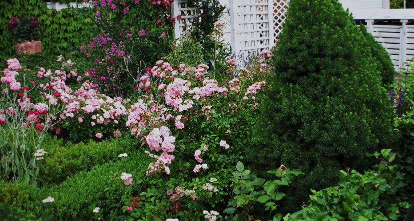 blick vom bürgersteig,in den vorgarten...die weißen mülltonnen-boxen stehen an der grundstücksgrenze