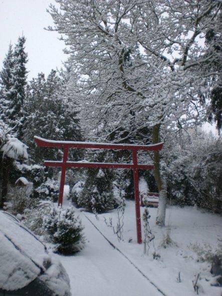 Garten 'Vorgarten und Garten'