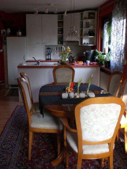 Küche 'Küchenzeile'