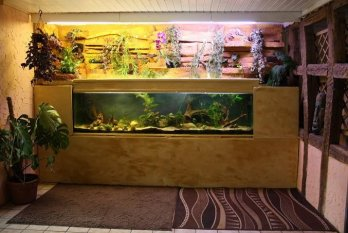 Aquariumzimmer