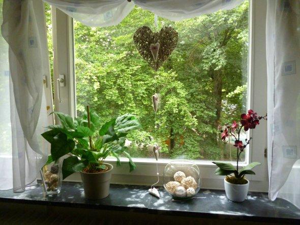 Wohnzimmer Fenster Deko