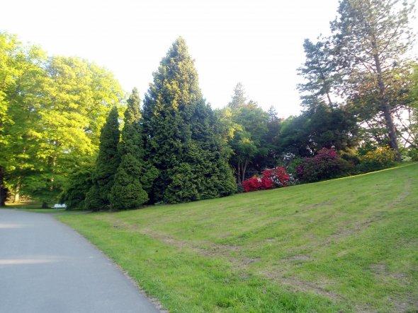 Hausfassade / Außenansichten 'Rombergpark'
