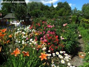 Garten 'Draußen'
