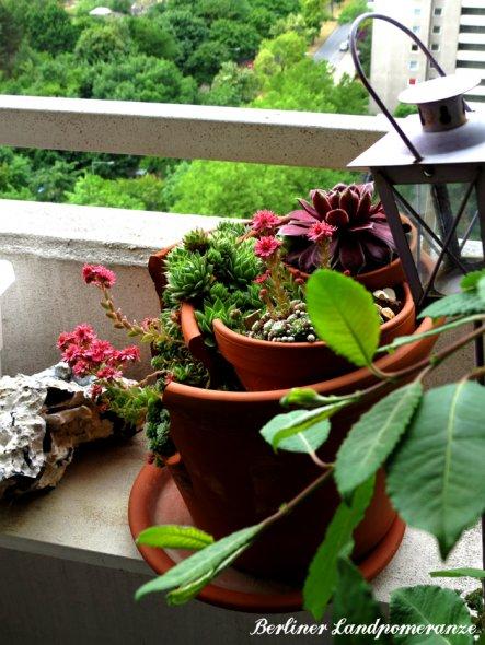 Terrasse / Balkon 'Balkon mit Panoramablick'