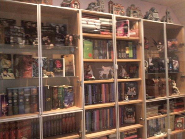 Hobbyraum 'Meine Lesewand'