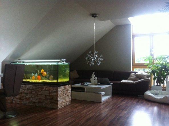Wohnzimmer domizil by mela und von shaccur 32529 zimmerschau - Jette joop wandfarbe ...