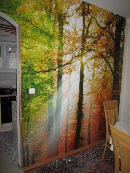 Inzwischen Habe Ich Eine Wand Im Esszimmer Mit Einer Fototapete Gestaltet.