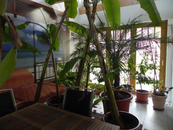 Hobbyraum 'Wintergarten'
